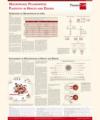 Macrophage Polarization Poster