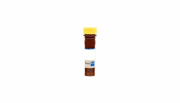 Annexin V Unlabeled Reagent