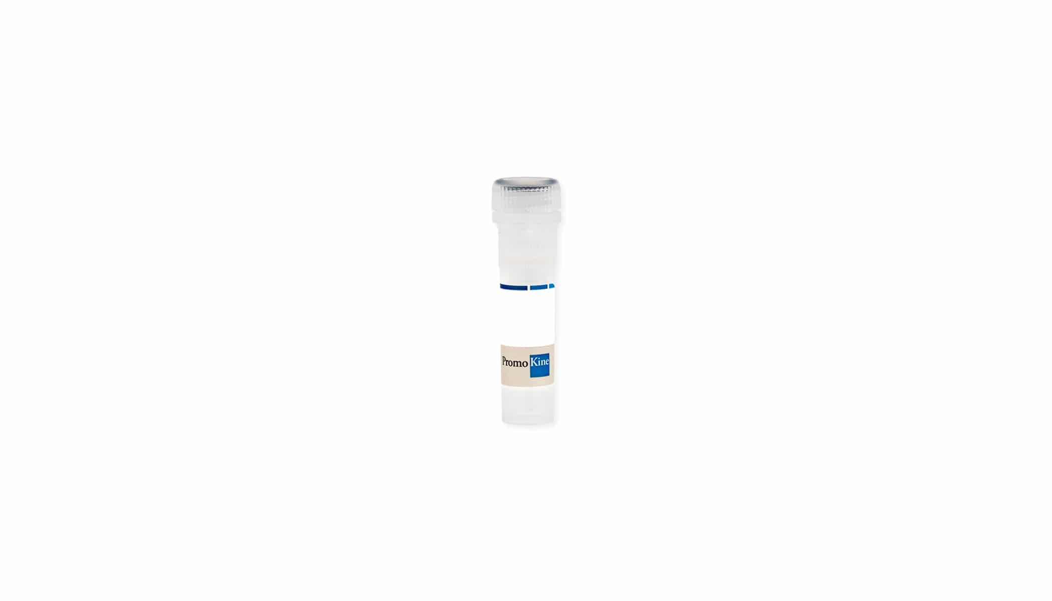PromoFectin-mRNA