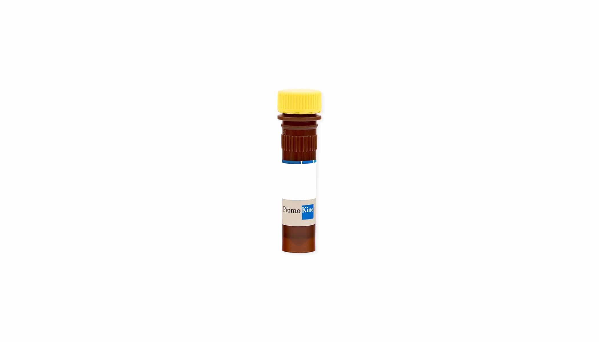 Coelenterazin fcp